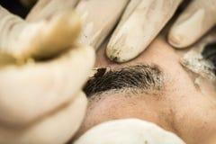 Sourcil de maquillage tatouant, visage assez asiatique de femme Photographie stock