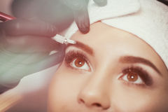 Sourcils permanents de maquillage Photo stock