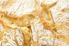 Sourdough Bread Texture Stock Image