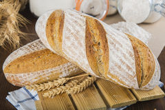 Sourdough bread Royalty Free Stock Image