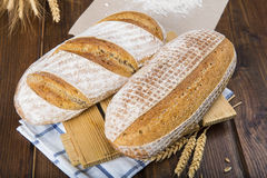 Sourdough bread Stock Photography