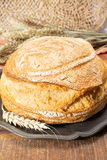 Sourdough homemade round white wheat bread close up. In Italy stock photos