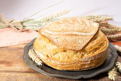 Sourdough homemade round white wheat bread close up. In Italy royalty free stock photo