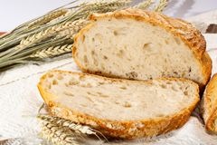 Sourdough homemade round white wheat bread with slices close up. In Italy royalty free stock images