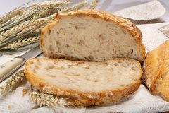 Sourdough homemade round white wheat bread with slices close up. In Italy royalty free stock photos