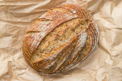 Sourdough loaf Stock Image