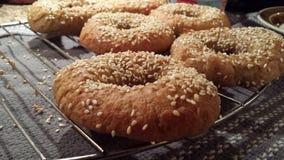 Sourdough sezamu Bagels Zdjęcie Royalty Free