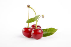 Soure cherries with leaf 2 Stock Images