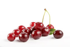 Soure cherries with leaf 5 Royalty Free Stock Image
