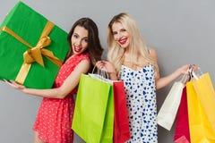 Souriant deux amis de dames posant avec les paniers et le cadeau Photos libres de droits