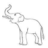 Souriant l'éléphant en longueur vers le haut du tronc Illustration de vecteur illustration stock