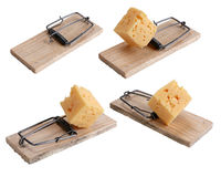 Souricière à clapet amorcée avec du fromage photos stock