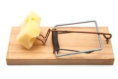 Souricière à clapet avec du fromage Images stock
