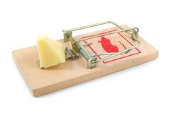Souricière avec du fromage Photographie stock libre de droits