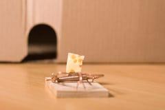 Souricière et fromage Photos libres de droits