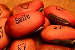 Sourire Image libre de droits