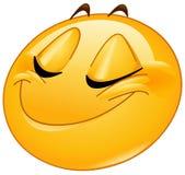 Sourire avec l'émoticône fermée de femelle de yeux Photos libres de droits