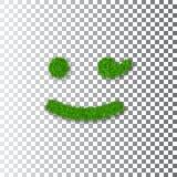 Sourire 3D de clin d'oeil d'herbe verte Fond transparent blanc d'icône herbeuse souriante d'émoticône Signe de sourire heureux Sy illustration libre de droits