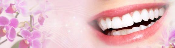Sourire de dents de femme photos libres de droits