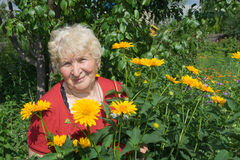 Sourire de grand-mère Images stock