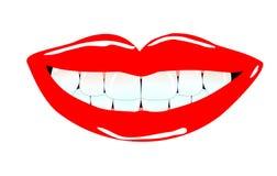 Sourire de Lovley Image libre de droits