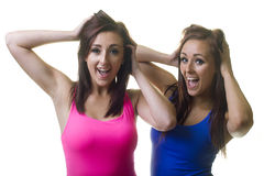 Sourire jumeau heureux de soeurs Image libre de droits
