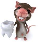 Souris avec une dent Image stock