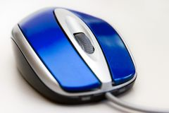 Souris bleue Photos stock