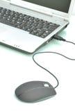 souris d'ordinateur portatif Images libres de droits