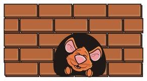 Souris de Brown jetant un coup d'oeil d'un trou dans le mur Image libre de droits