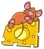 Souris dormant et étreignant l'une seule pièce du fromage Image stock