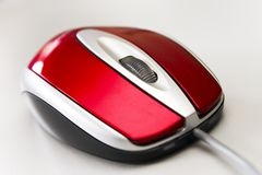 Souris rouge Photographie stock