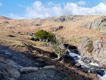 By Sourmilk gill in Easedale, Lake District. A steady Sourmilke gill with Greathead Crag behind not far from Easedale tarn Royalty Free Stock Photography