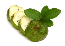 Soursop Annona muricata Stock Images