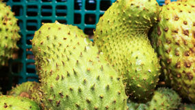 Soursop exotic fruits with selective focus and shallow depth of field. Royalty Free Stock Photos