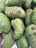 Soursop Stock Images