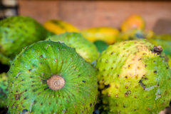 Soursop fruit at asian market Stock Photography