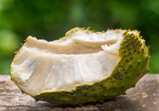 Soursop fruit. Indonesian soursop fruit is delicious one Royalty Free Stock Image