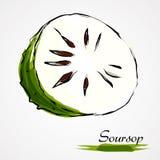 Soursop, guanabana Stock Image