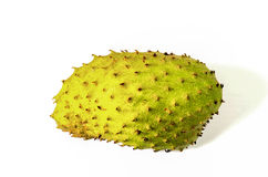 Soursop Isolated On White Background Royalty Free Stock Photography