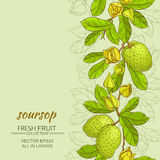 Soursop vector background. Soursop branches vector pattern on color background Royalty Free Stock Images
