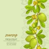 Soursopvektorbakgrund Royaltyfria Bilder