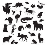 Sourth America animals  vector illustration. Black contour big vector set isolated on white background. Stock Photography