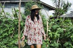 Sous-espèce thaïlandaise d'unguiculata de Vigna d'agriculture de récolte de femmes sesquipe Images stock
