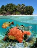Sous la mer et au-dessus du cordon Photo libre de droits