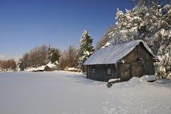 Sous la neige Image libre de droits