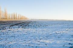 Sous la neige Photographie stock