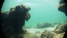 Sous le bleu voir la roche Photo stock