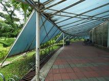 Sous le passage couvert de toit Photo libre de droits