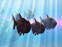 Sous-marin Photographie stock libre de droits
